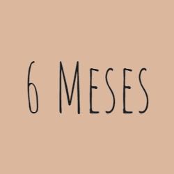 +6 Meses