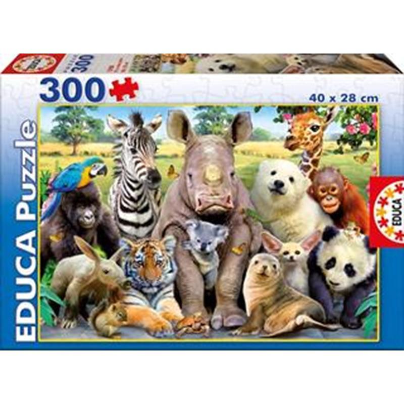 Educa puzzle 300 foto de clase