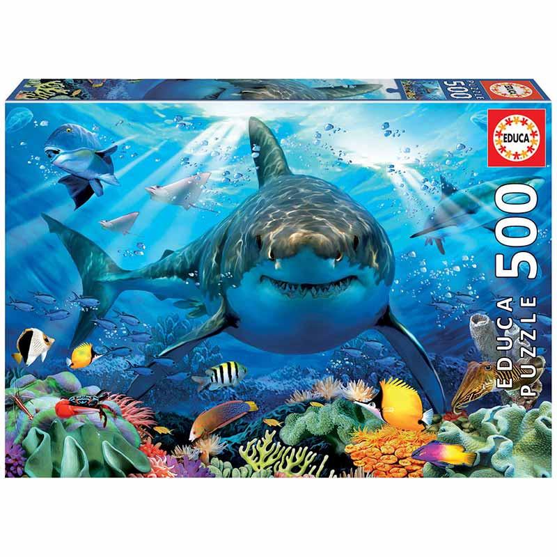 500 Gran tiburón blanco