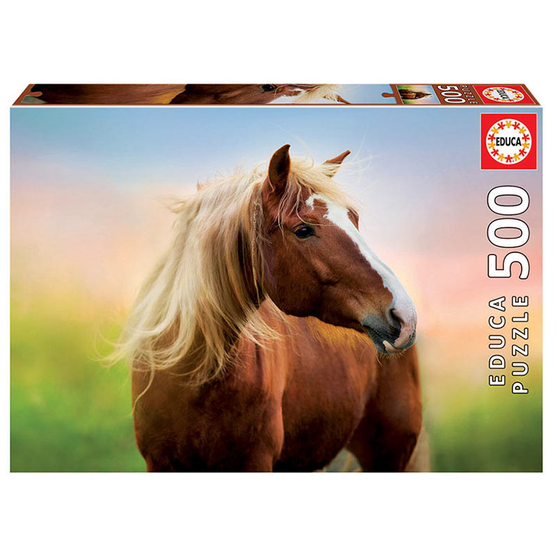 500 Horse at sunrise
