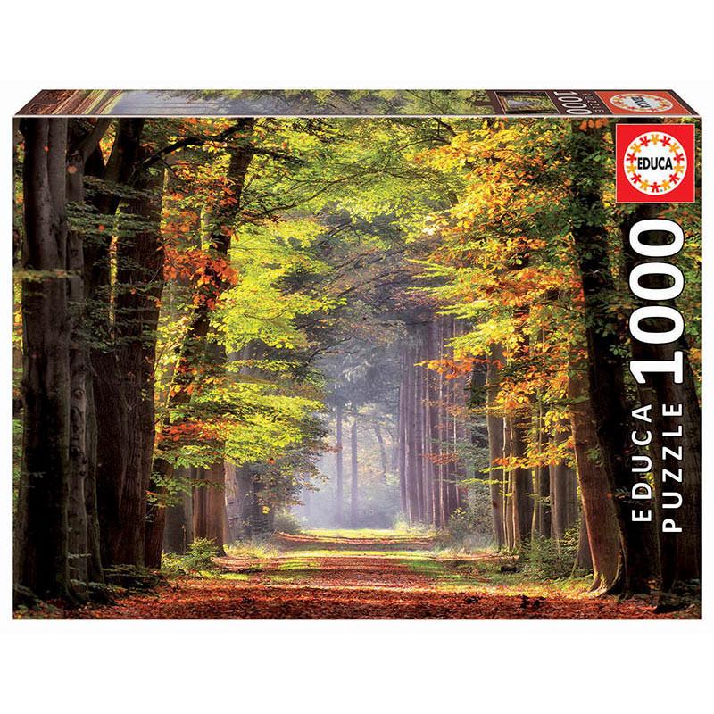 1000 Paseo Otonal
