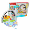 Fisher Price gimnasio Activity 2 en 1